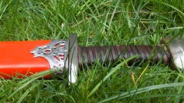 Viking sword in grass — Stock Video
