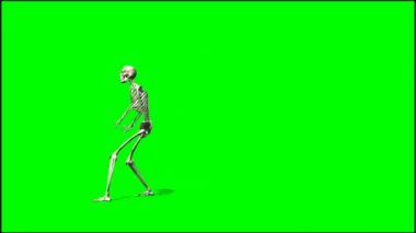Skeleton dancing rap — Stock Video