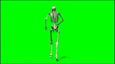 Skeleton walking rage — Stock Video