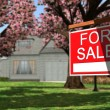 Home For Rent Real Estate Sign — Stock Photo #70291477