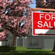 Home For Rent Real Estate Sign — Stock Photo #70291531