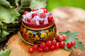 Yogurt with red currants in a bowl of Russian folk — 图库照片