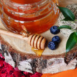 Rustic honey with a spoon on birch saw cut beautiful still life of health — Stock Photo #70311009