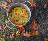 Cooking on a picnic - onion and pepper in a pan — Stock Photo