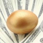 A golden egg on dollars — Stock Photo #55284799