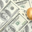 A golden egg on american dollars — Stock Photo #55284803