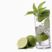 Mint in a glass isolated on white — Stock Photo