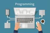 Programming and coding, website deveopment, web design. Flat vector concept. — Stock Vector