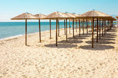 Row of wooden umbrellas at sandy beach, sea and blue sky — Stock Photo