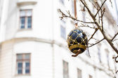 Black and gold painted Easter egg on the tree — Stock Photo