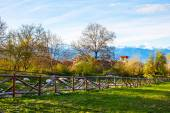Spring landscape with wooden fence, trees, and snowy mountains — Stock Photo