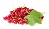 Bunch Of Red Currants With Currant Leaves — ストック写真
