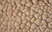 Dry cracked earth - Desert — Stock Photo