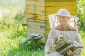 Teenage beekeeper with painted wooden beehives — Foto Stock