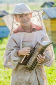 Young beekeeper checking hives on bee yard — Zdjęcie stockowe
