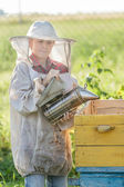 Teenage beekeeper and seasonal honey harvesting — Zdjęcie stockowe