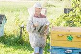 Teenage beekeeper checking hives on bee yard — Stock Photo