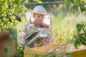 Teenage beekeeper smoking hive in bee yard — Stock Photo