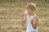 Teenage boy during field picnic — Stock Photo