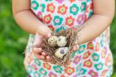 Kids arms holding nest with eggs — Stock Photo