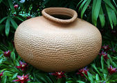 Clay pot and plants — Stock Photo