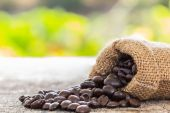 Coffee beans poured from the sack — Stock Photo