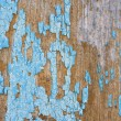 Obrezaushue paint on wooden wall — Stock Photo #56690475
