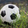 Постер, плакат: Battered old soccer ball slightly deflated in long grass of un