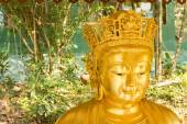 Smiling Chinese Golden Buddha Statue in background of nature — Stock Photo