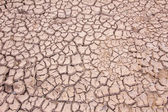 Dried cracked mud,drought land so long waterless — Stock Photo