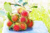 Fresh rambutans on blue bench, with copyspace on the right — Stock Photo