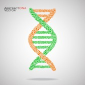 Abstract DNA. Colorful molecular structure. Vector illustration. Eps 10 — Stock Vector