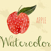 Hand drawn style watercolor apple. Nature — Stock Vector