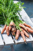 Organics carrots. — Stock Photo