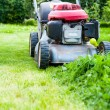 Lawn mowing — Stock Photo #54881733