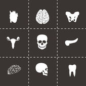 Vector black anatomy icons set — Stock Vector