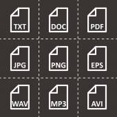 Vector black file type icon set — Stock Vector