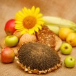 Autumn harvest of fruits and vegetables piled on the table. — Stock Photo #56572659