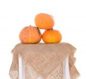 Pyramid of orange ripe pumpkins — Stock Photo