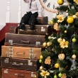 Boy on pile of suitcases at christmas tree — Stock Photo #58679573