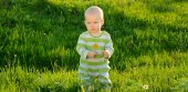 Toddler baby on spring green grass background — Stock Photo
