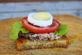 Open sandwich with fish, egg, lettuce and tomato — Stock Photo