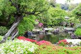 Park v japonském stylu — Stock fotografie
