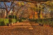 Parque del buen retiro — Foto de Stock