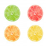 Collection of citrus slices - orange, lemon, lime and grapefruit isolated on white background — Stock Photo #65493545