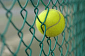 Tennis ball in the chainlink behind court — Stock Photo