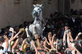 Fiestas de sant joan de ciutadella, menorca — Foto de Stock