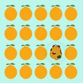 Orange rotten and ripe oranges — Stock Vector