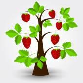 Strawberry tree — Stock Vector