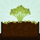 Łodygi selera i kompostu — Wektor stockowy